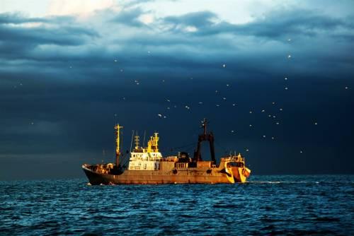 Навылов рыбы на далеком Востоке будет зарезервировано 20% квот— Юрий Трутнев